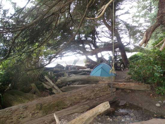Juan de Fuca Trail camping at  													  Bear Beach