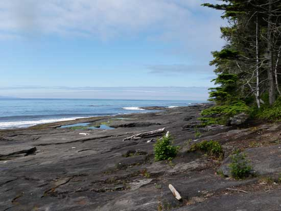 Juan de Fuca Trail sandstone shelf