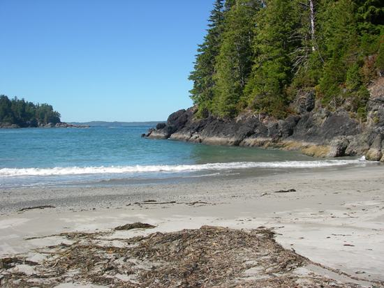 Kayaking Vancouver Island Nootka Sound sandy pocket beach